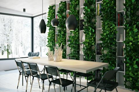 Модное озеленение интерьера: актуальные тенденции в фитодизайне
