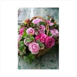 Купить Букеты и цветочные композиции Букет №9 в СПб с доставкой