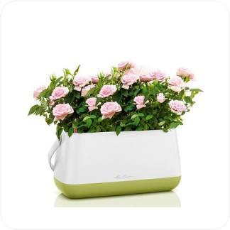 Купить Кашпо LECHUZA Lechuza Yula Корзинка для растений в СПб с доставкой